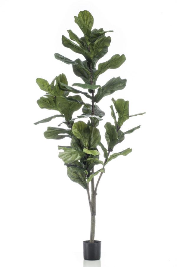 Artificial Ficus Lyrata 150cm/50lvs