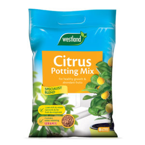 Westland Citrus Potting Mix