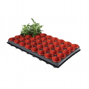 W0050 Professional Seed and Cutting Tray 40x6cm