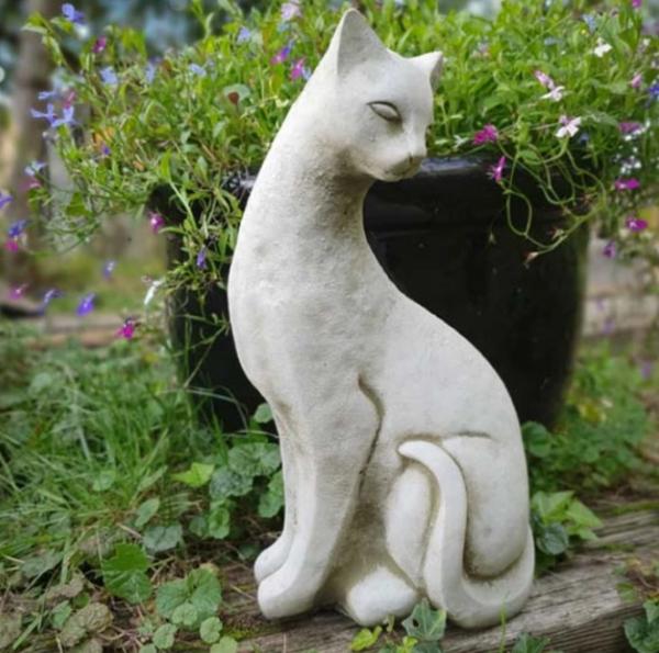 Siamese Cat B