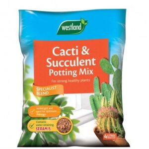 Westland Cacti & Succulent Potting Mix