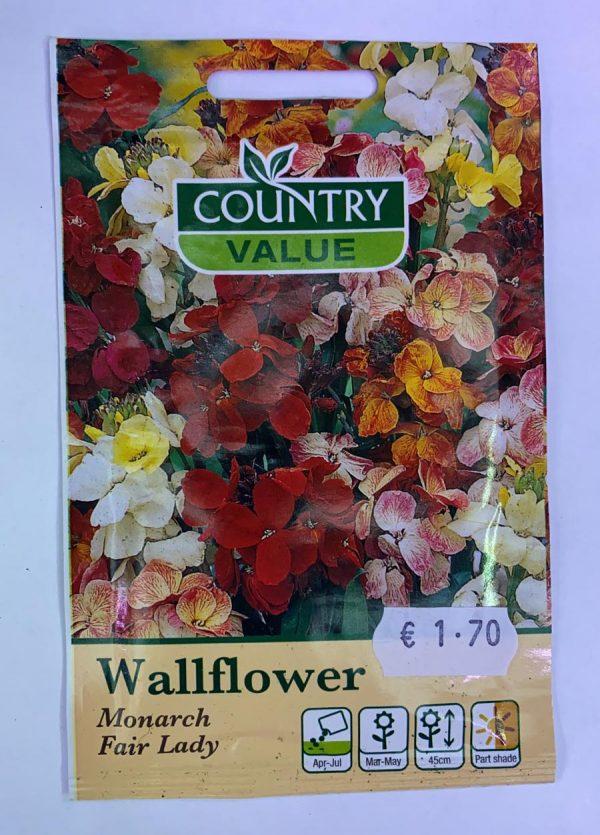 Wallflower Monarch Fair Lady Seeds