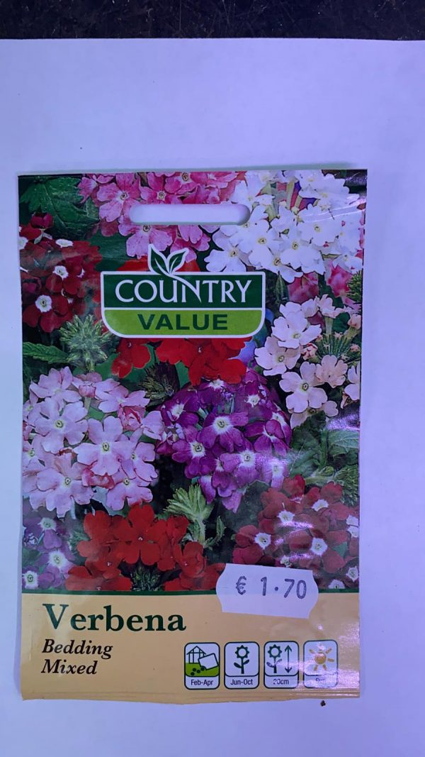 Verbena Bedding Mix Seeds