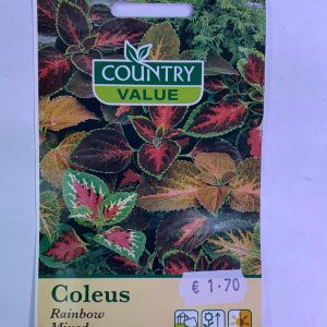 Country Value Coleus Rainbow Mixed Seeds
