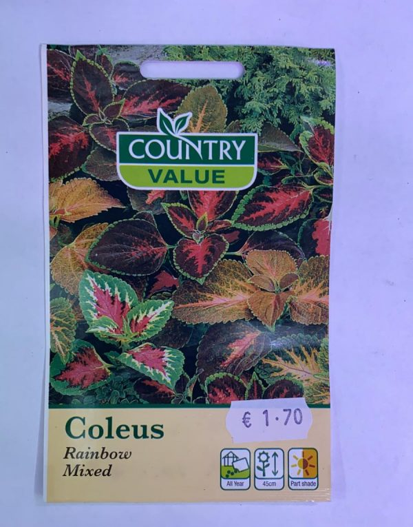 Country Value Coleus Rainbow Mixed Seeds