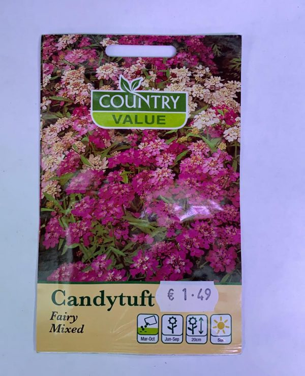 Candytuft Seeds Fairy Mixed Seeds