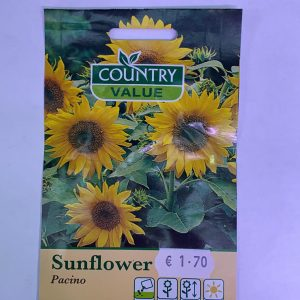 Country Value Sunflower Pacino Seeds