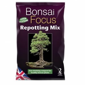 Bonsai Focus Repotting Mix 2 L