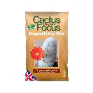 Cactus Focus Repotting Mix 2L