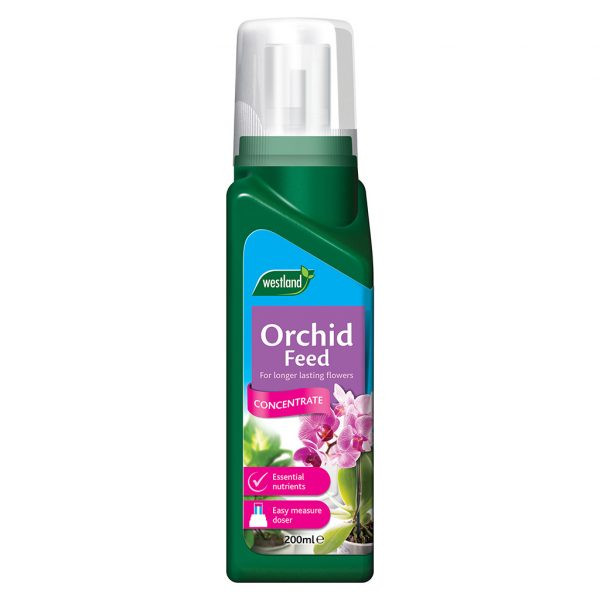 westland orchid feed