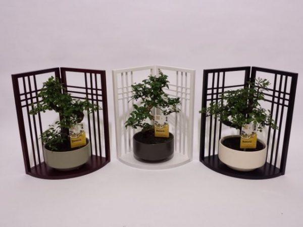 Bonsai mix japanese wooden screen