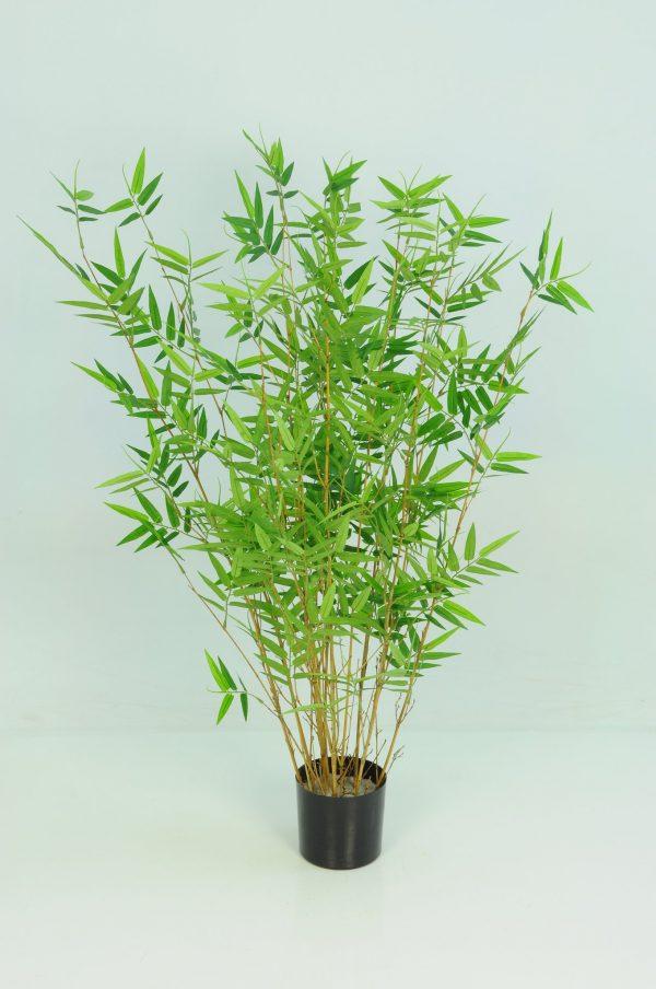Bamboo Oriental