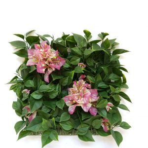 Bougainvillea with Flower Tile