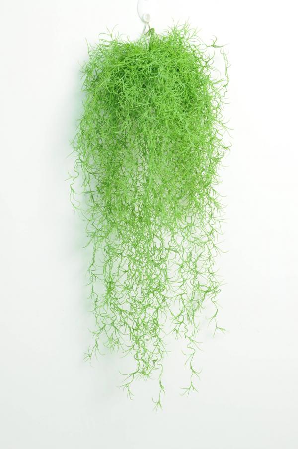 Long Hair Hanging Vine