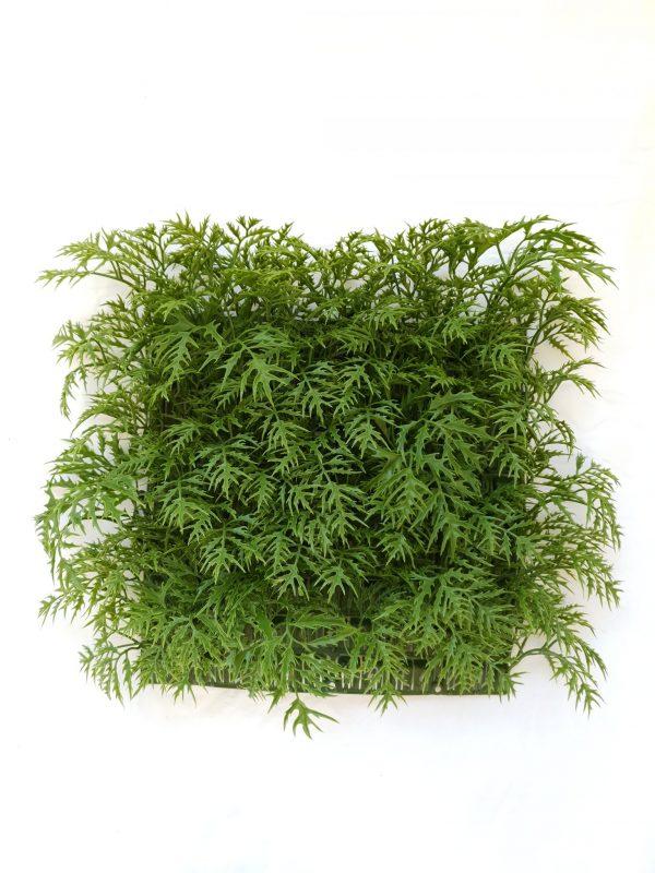 Green Ming Aralia Tile
