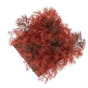 Red Ming Aralia Tile