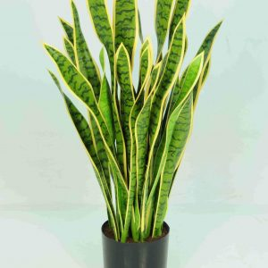 Artificial Sansevieria Mother in Law Tongue 110cm