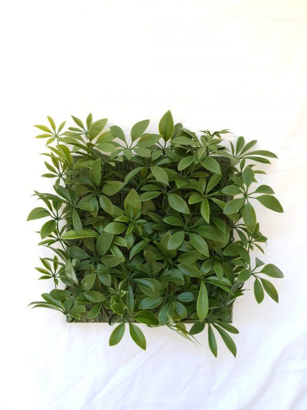 Green Schefflera Tile