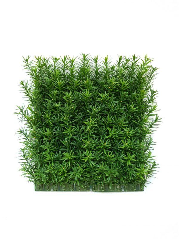 Taxus Tile
