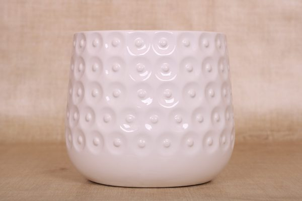 K.12cm(x06)062199 grape white