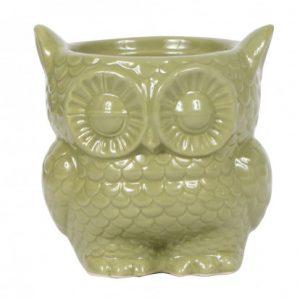 Ceramic Owl Pot Green 9cm