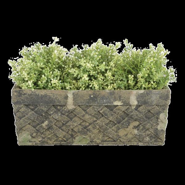 Aged Ceramic Trough Moss