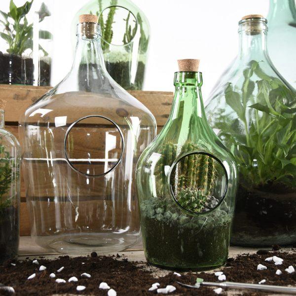 Open terrarium bottle 10 litre 2